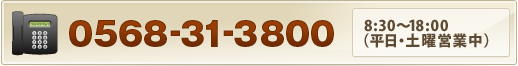 0568-31-3800
